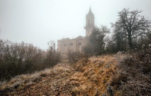 Картинка природа, туман, дом
