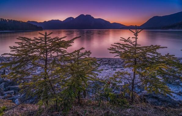 Картинка закат, горы, озеро, Германия, ели, Бавария, ёлки, Germany, Bavaria, Bavarian Alps, Баварские Альпы, Lake Walchen, …