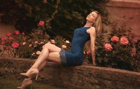 Картинка цветы, поза, газон, модель, портрет, розы, макияж, сад, фигура, стройная, платье, прическа, блондинка, туфли, ножки, ...