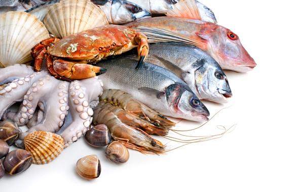 Картинка рыба, белый фон, ракушки, крабы, креветки, морепродукты, кальмары