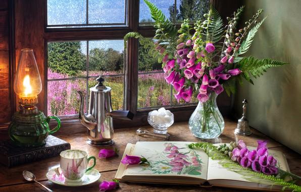 Картинка цветы, стиль, лампа, букет, окно, кружка, чашка, сахар, книга, папоротник, кофейник, Дигиталис, Наперстянка