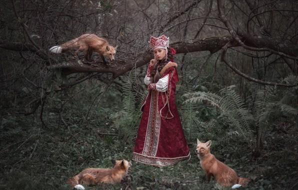 Картинка лес, девушка, наряд, лисы, царевна, Софья Ознобихина