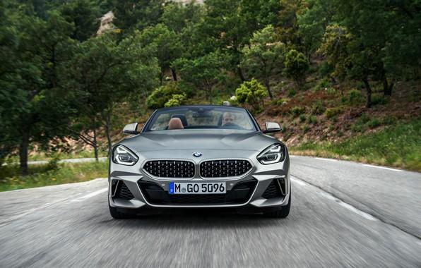 Картинка дорога, серый, растительность, BMW, родстер, вид спереди, BMW Z4, M40i, Z4, 2019, G29