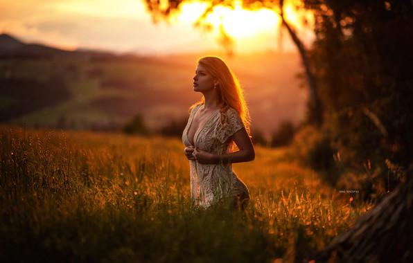 Картинка поле, девушка, закат, модель, красиво, Miki Macovei