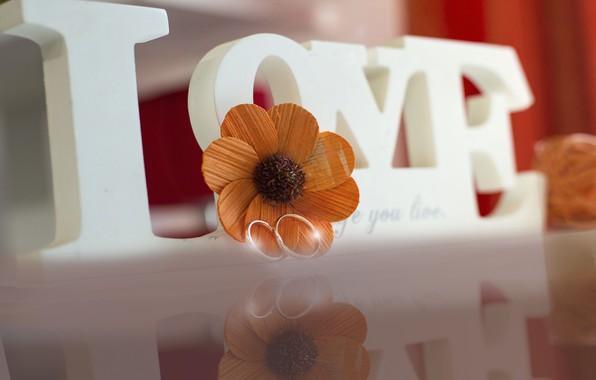 Картинка белый, цветок, макро, любовь, оранжевый, отражение, фон, золото, кольца, красиво, слова, свадьба, обручение