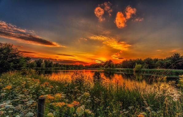 Картинка пейзаж, закат, природа, красота, луг