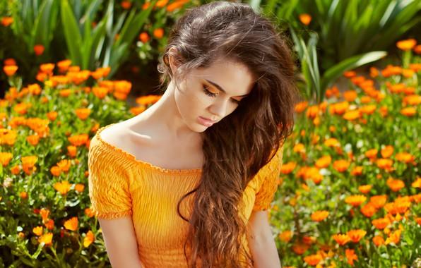 Картинка девушка, цветы, милашка, боке