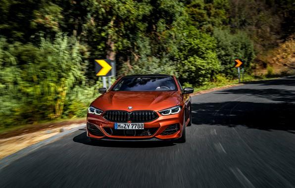 Картинка дорога, деревья, купе, поворот, BMW, знаки, Coupe, 2018, 8-Series, тёмно-оранжевый, M850i xDrive, 8er, G15