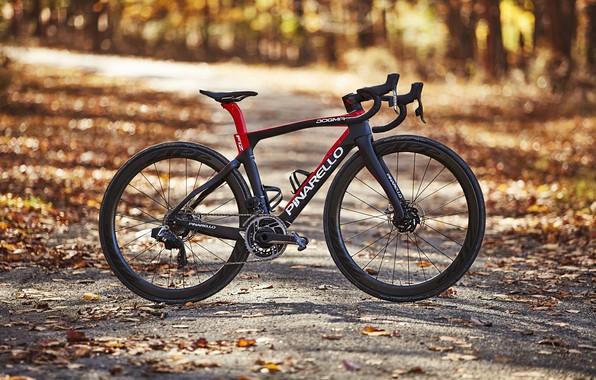 Картинка осень, велосипед, спорт, байк, bicycle, Carbon, Sport, шоссейный, Love on the Bike, Pinarello, procycling, Pinarello …