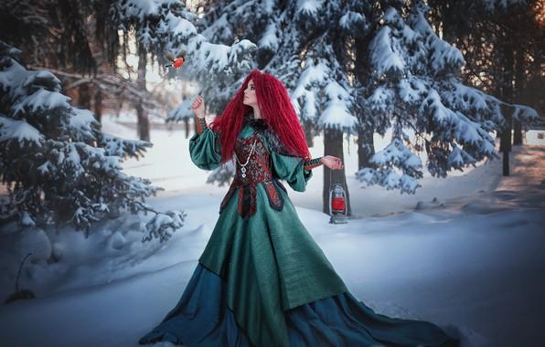 Картинка зима, лес, девушка, снег, деревья, природа, птица, платье, фонарь, Александра Шимолина, снеГирь