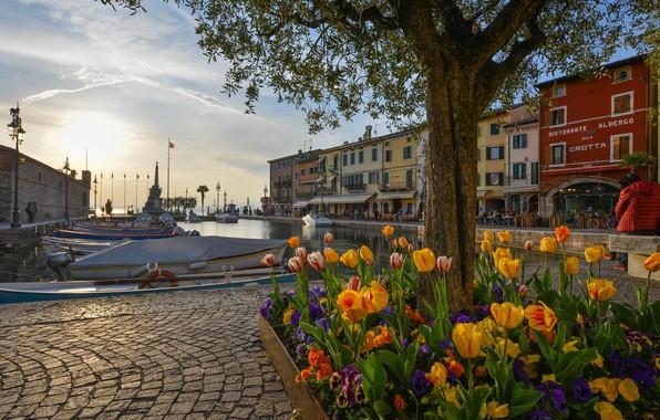 Картинка цветы, озеро, дерево, здания, дома, бухта, лодки, порт, Италия, клумба, набережная, Italy, Lake Garda, Lazise, …