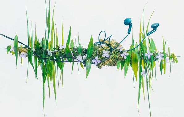 Картинка трава, наушники, grass, headphones, Dina Belenko