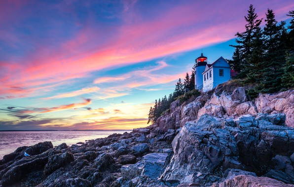 Картинка облака, деревья, пейзаж, природа, камни, океан, скалы, рассвет, побережье, маяк, утро, ели, национальный парк, Акадия, …