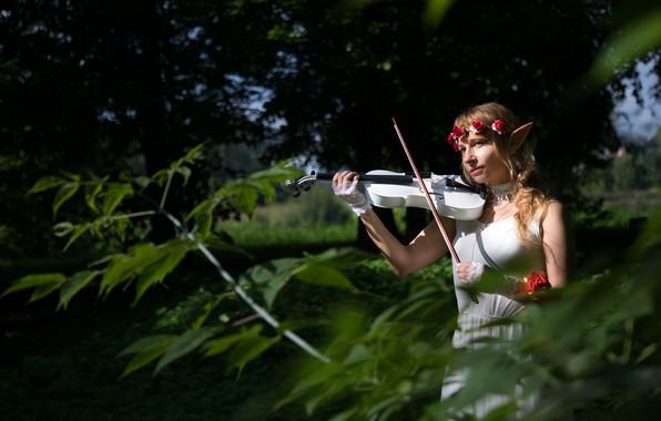 Картинка лето, взгляд, листья, девушка, свет, деревья, цветы, ветки, природа, парк, темный фон, настроение, женщина, скрипка, …