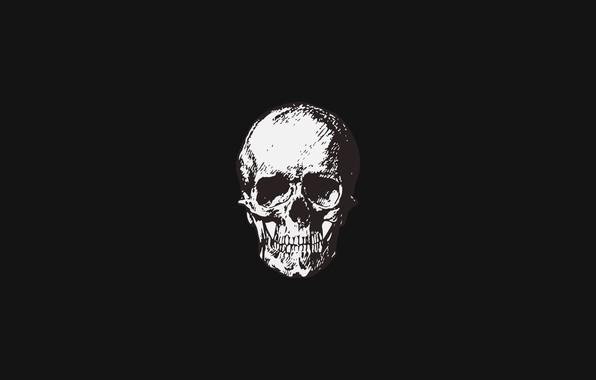 Картинка simple, череп, минимализм, skull, черный фон, minimalism, Black background