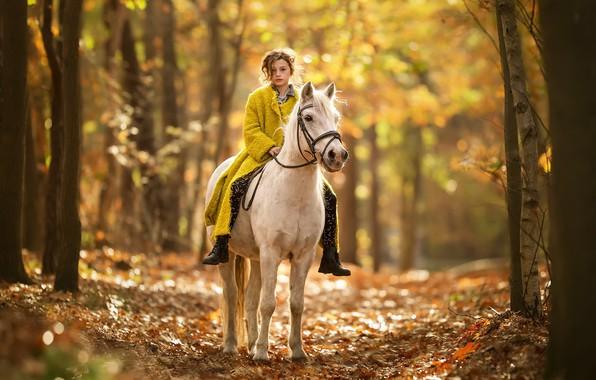 Картинка осень, природа, конь, девочка