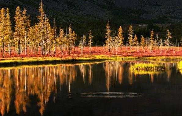 Картинка горы, озеро, Россия, тундра, Колыма, фотограф Максим Евдокимов