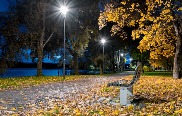 Картинка листва, вечер, фонари, набережная, скамья