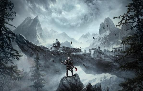 Картинка The Elder Scrolls Online, Nord, nord, tes online, Dark Heart of Skyrim, The Elder Scrolls …