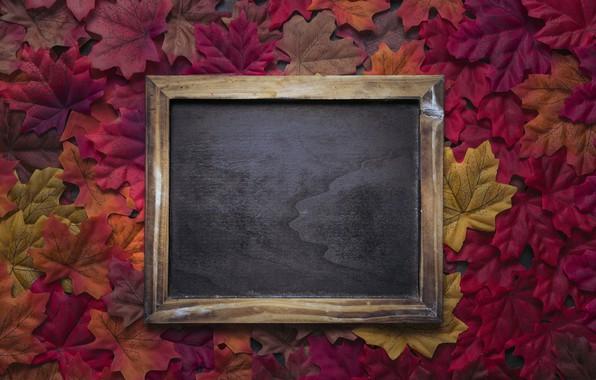 Картинка осень, листья, фон, colorful, red, доска, клен, wood, background, autumn, leaves, осенние, maple