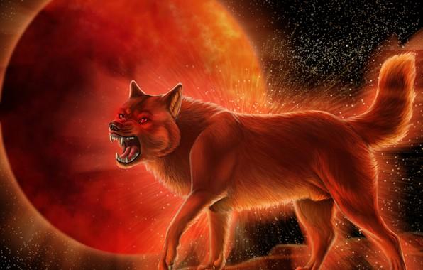 Картинка волк, хищник, шерсть, пасть, клыки, оскал, wolf, кровавая Луна, матерый