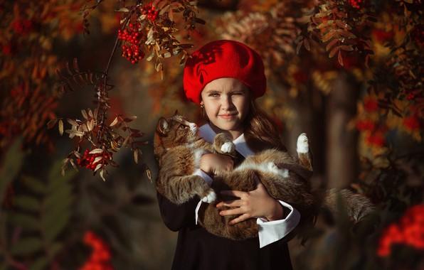 Картинка осень, кошка, ветки, ягоды, девочка, берет, рябина, Алина Иванова