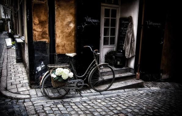Картинка цветы, велосипед, город, улица, корзина, здания, мостовая