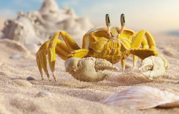 "Картинка море, пляж, лето, краб, арт, крабик, Mr ""Yellow"" Crab, Daniel Klepek"