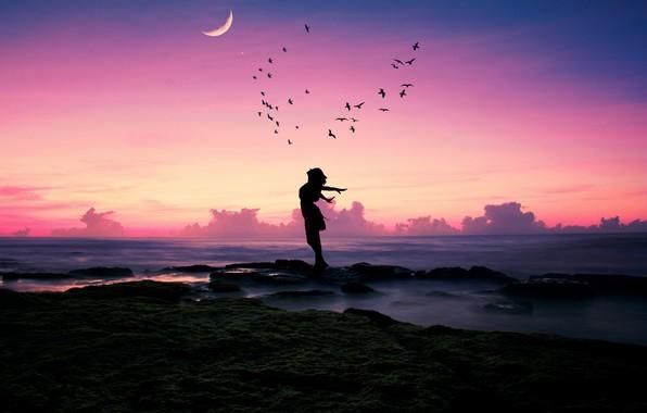 Картинка море, пляж, девушка, счастье, закат, птицы, поза, камни, настроение, луна, берег, стая, месяц, силуэт, сумерки, …