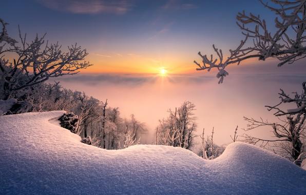 Картинка зима, снег, деревья, ветки, восход, рассвет, утро, сугробы, Словакия, Radoslav Cernicky, Малые Карпаты