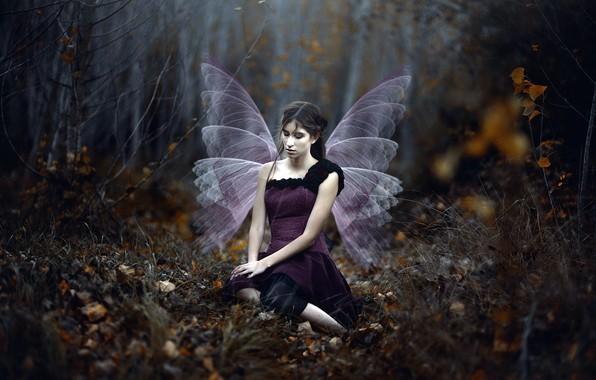 Картинка девушка, крылья, Mar Kalina