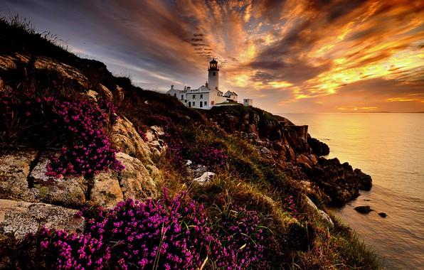 Картинка море, пейзаж, скалы, рассвет, маяк, утро, Ирландия, Donegal, Fanad Head Lighthouse, Графство Донегол