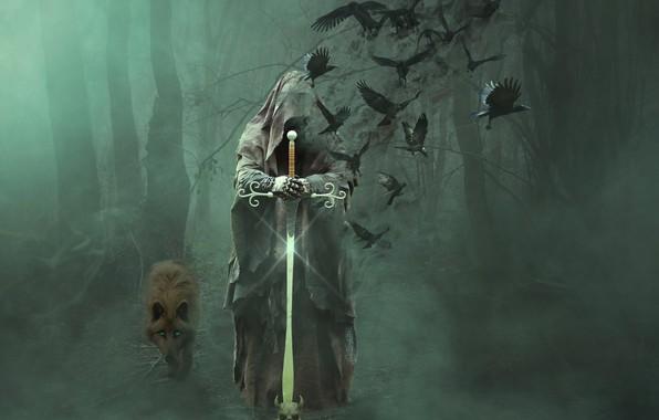 Картинка лес, деревья, птицы, туман, смерть, волк, меч, облачение