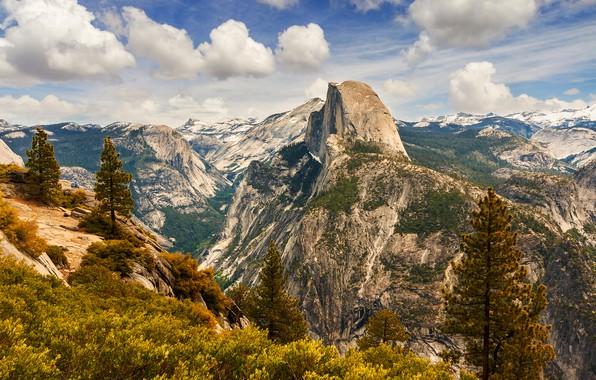 Картинка лес, небо, солнце, облака, деревья, горы, камни, скалы, высота, Калифорния, ущелье, США, Йосемити, Yosemite National …