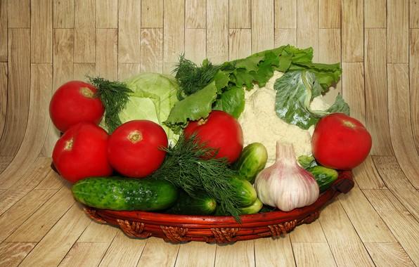 Картинка зелень, природа, настроение, красота, укроп, натюрморт, корзинка, овощи, помидоры, красивые, капуста, beautiful, beauty, harmony, обои …