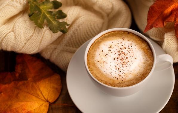 Картинка осень, листья, фон, colorful, шарф, wood, background, autumn, leaves, cup, coffee, осенние, чашка кофе, maple