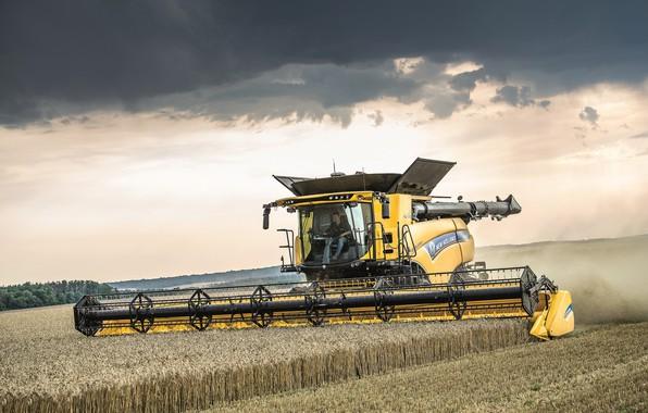 Картинка Небо, Поле, 2018, Комбайн, New Holland, Пшеника, New Holland CR10.90 Revelation