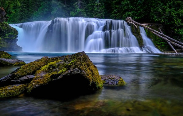 Картинка лес, деревья, река, камни, водопад, мох, Вашингтон, США, Washington, Lower Lewis River Falls, река Льюис, …