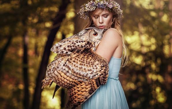 Картинка лес, девушка, свет, деревья, цветы, природа, лицо, фон, друг, сова, птица, крылья, блондинка, дружба, венок, …