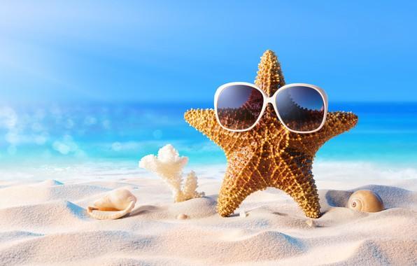 Обои песок, море, пляж, лето, звезда, отпуск, очки, ракушки, summer, beach, sand, vacation, starfish, sunglasses, seashells