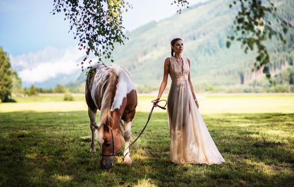 Картинка поле, девушка, солнце, фото, лошадь, платье, Miki Macovei, Matea