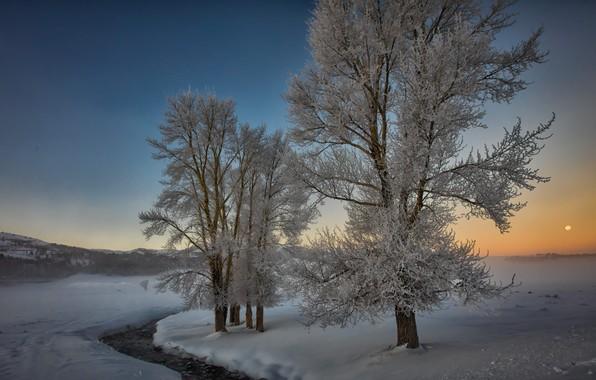 Картинка зима, снег, деревья, пейзаж, природа, река, рассвет, утро, долина, США, Йеллоустоун, Yellowstone, национальный парк, National …