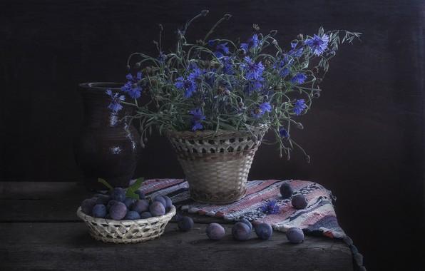 Картинка цветы, темный фон, голубые, кувшин, натюрморт, синие, васильки, слива