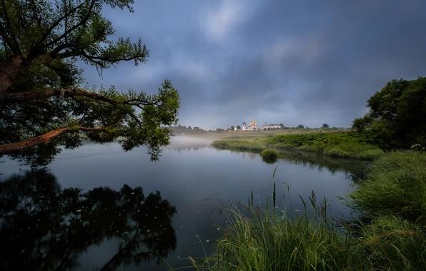 Картинка лето, деревья, пейзаж, ветки, природа, туман, река, утро, травы, монастырь, берега, Андрей Чиж, Можайск