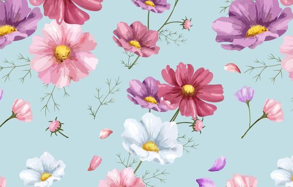 Картинка цветы, фон, рисунок, colorful, орнамент, pink, flowers, цветочный, background, pattern, cosmos, floral