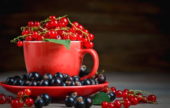 Картинка ягоды, кружка, смородина