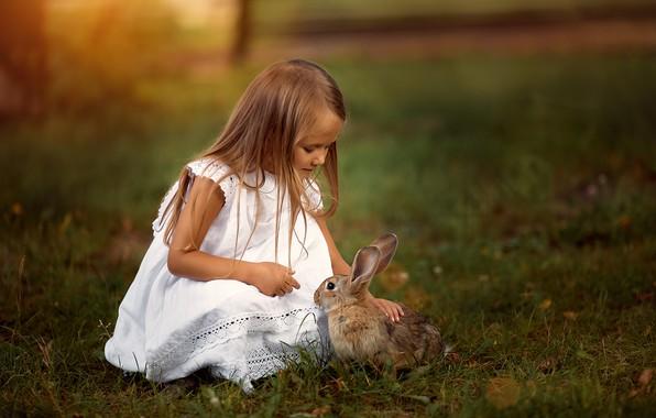 Картинка трава, природа, животное, заяц, платье, девочка, ребёнок