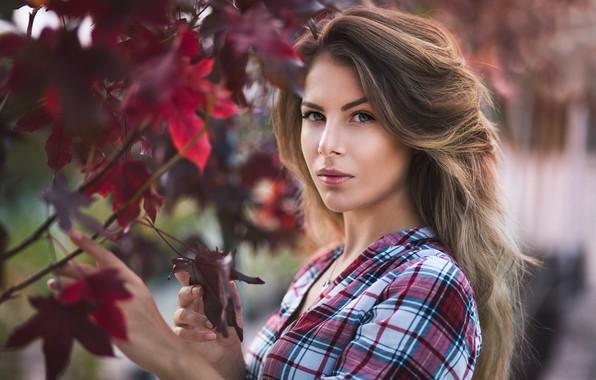 Картинка взгляд, листья, модель, волосы, Девушка, фигура, рубашка, плечо, Vanya Tufkova