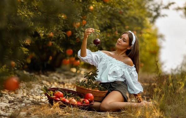 Картинка девушка, деревья, поза, настроение, сад, блузка, гранаты, корзины, Mariia, Alex Darash, Мария Мозель