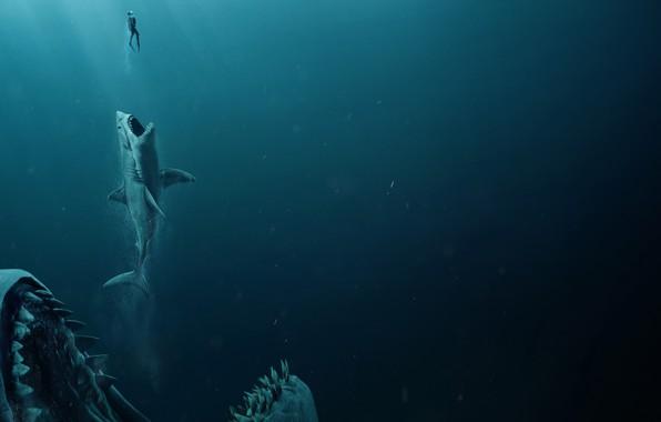 Картинка man, shark, jaws, The meg, Megalodon